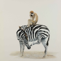 Monkey and Zebra